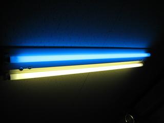 カラー蛍光灯