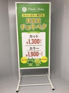 Tgata_syoumen.jpg
