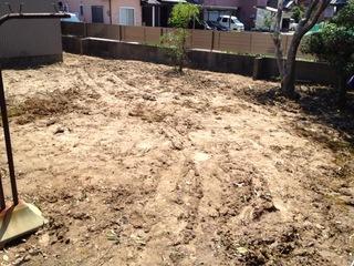 庭の植木を除去